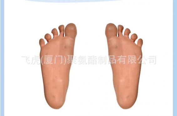 01医疗脚模型MEDICAL FEE MODEL