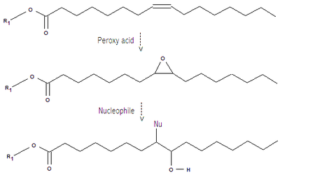 Epoxidation and ring opening of unsaturated triglyceride